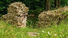 GALERIA / Kobiernice Sosna – ruiny średniowiecznej Warowni Wołek – Zawodzie